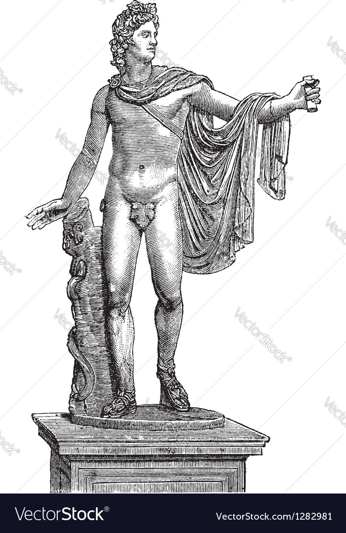 Apollo belvedere statue vector | Price: 1 Credit (USD $1)