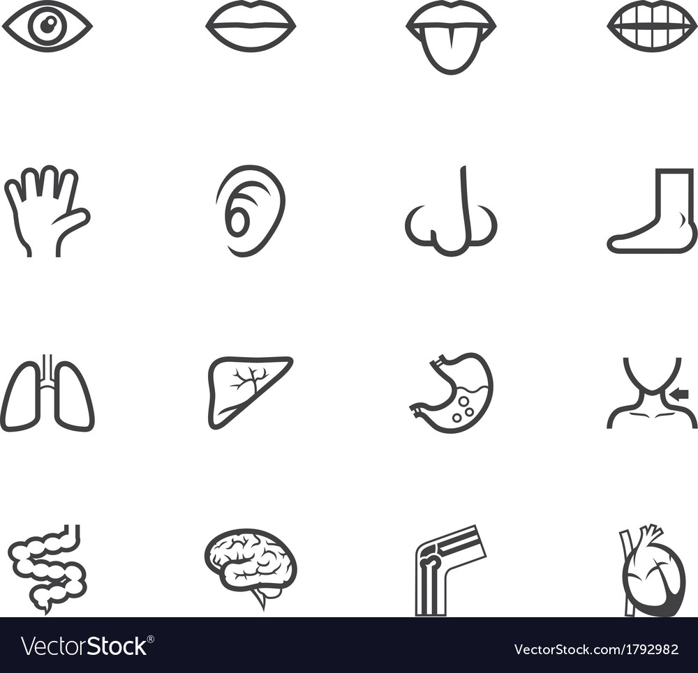 Body black icon set on white background vector | Price: 1 Credit (USD $1)