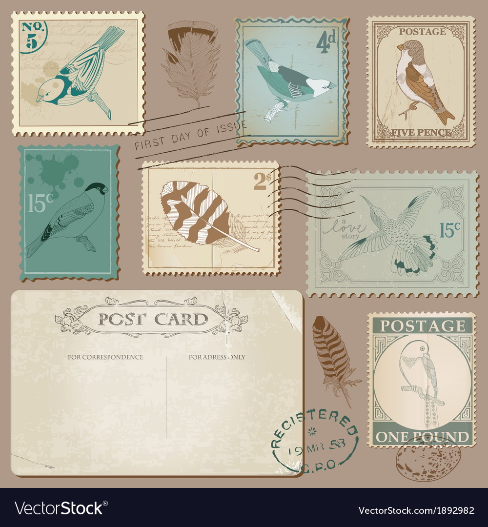 Vintage postcard and postage stamps with birds vector | Price: 1 Credit (USD $1)