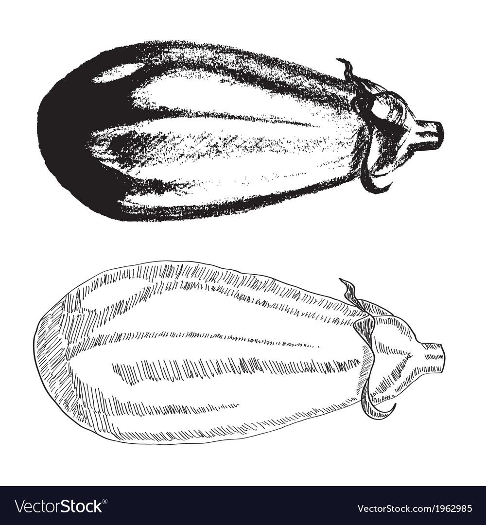 Hand drawn eggplant vector | Price: 1 Credit (USD $1)