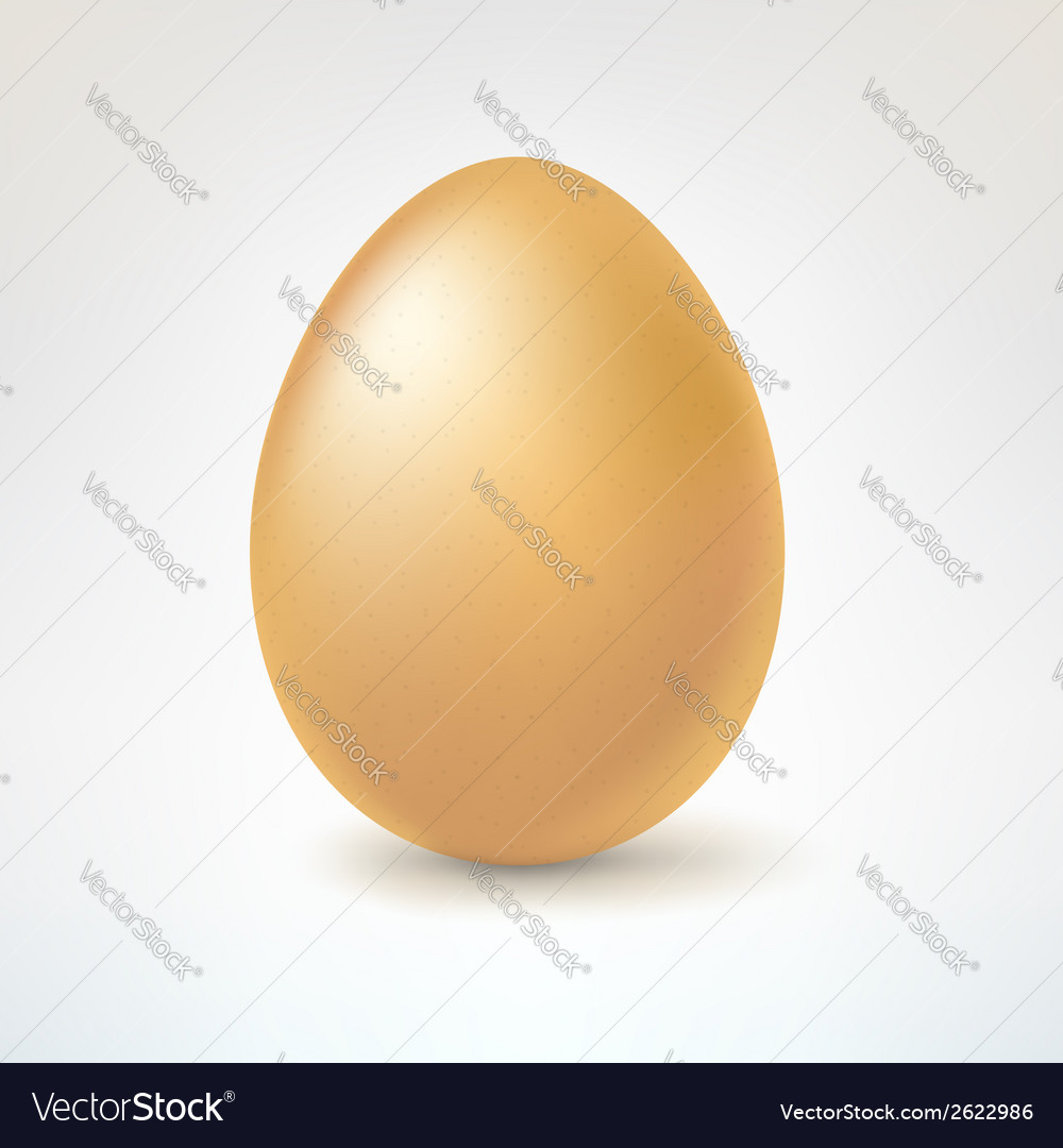Brown egg isolated on white background vector | Price: 1 Credit (USD $1)