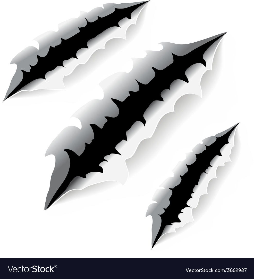 An of a monster claw or hand scratch or rip vector | Price: 1 Credit (USD $1)