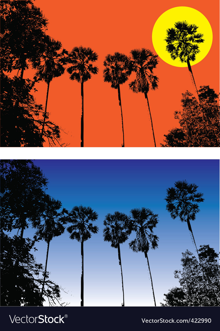 Sugar palm vector | Price: 1 Credit (USD $1)