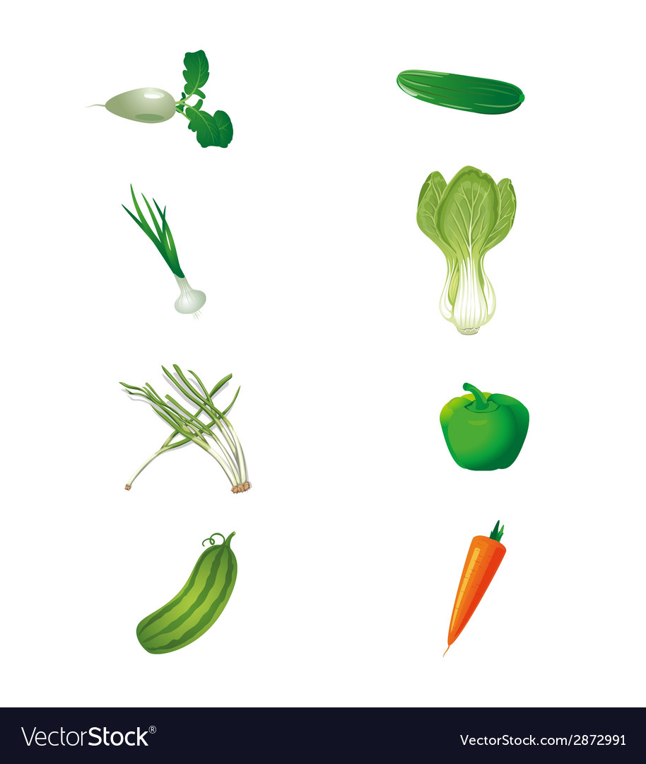 Set of fresh green vegetables isolated vector | Price: 1 Credit (USD $1)