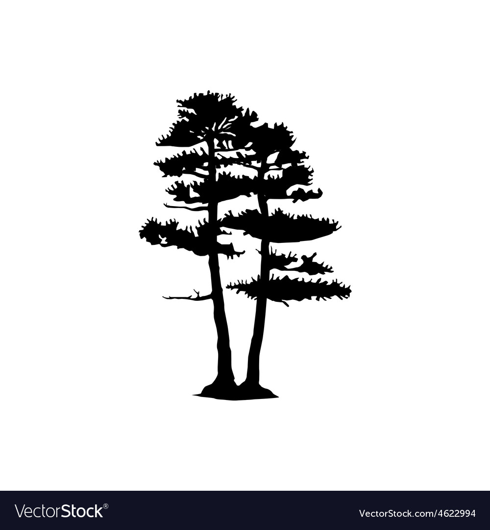 Coniferous trees silhouettes vector | Price: 1 Credit (USD $1)