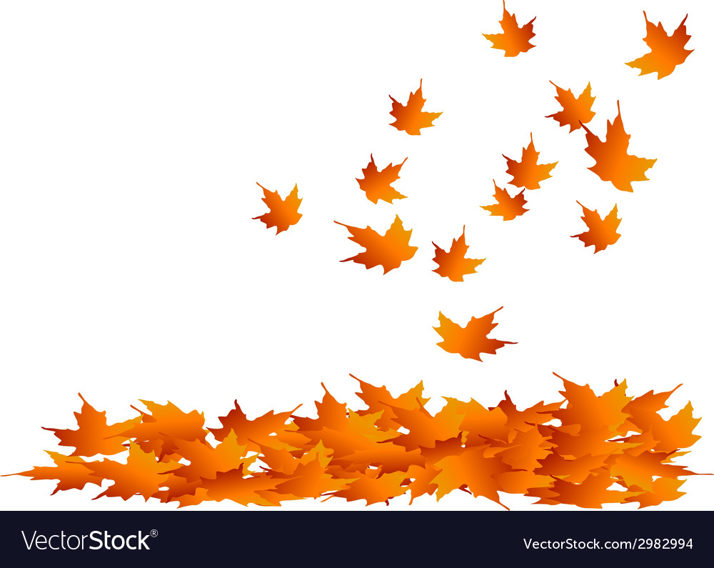 Maple-leaves falling vector | Price: 1 Credit (USD $1)