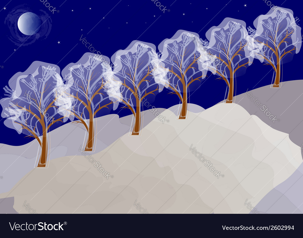 Winter night landscape with trees vector | Price: 1 Credit (USD $1)