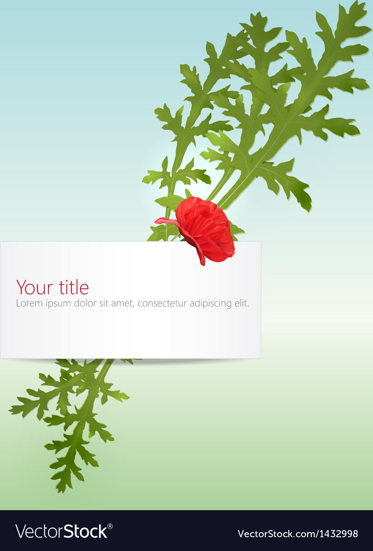 Spring banner with poppy vector | Price: 1 Credit (USD $1)