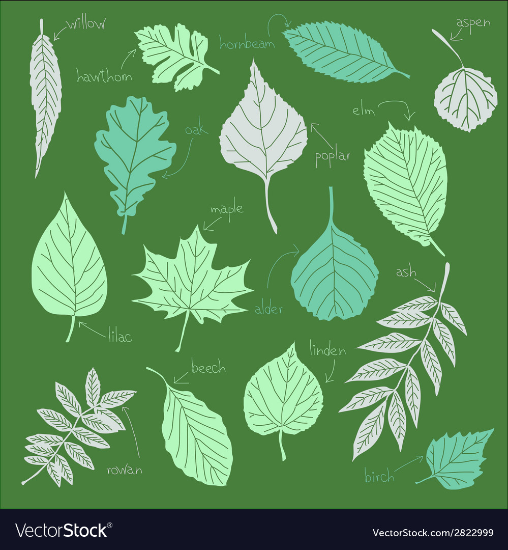Color sheets vector   Price: 1 Credit (USD $1)