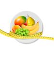 Diet meal fruit vector