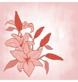 Flower lily invitation or greeting card vector