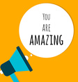 You are amazing in speech bubble with megaphone vector