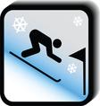 Winter icon -slalom vector