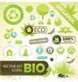 Eco concept elements vector
