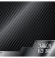 Carbon textured background with metal plate vector