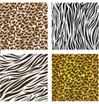 Pattern of animal print vector