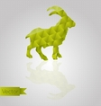 Abstract triangular goat vector