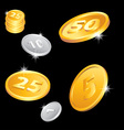 Of the golden and silver coins vector
