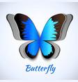 Papercut butterfly card vector