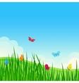 Beautiful summer meadow vector