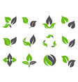 Green leaves design icons vector