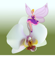 Small fairy sitting on a flower vector