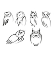 Owl bird icons in doodle outline style vector