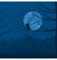 Spider on a web against the night sky a vector