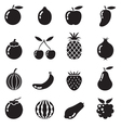 Piece of fruits icon bw vector
