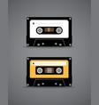 Cassette vector