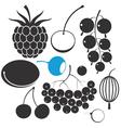 Berrys vector