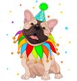 French bulldog birthday vector