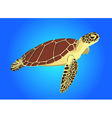 Sea turtle on blue background vector
