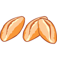 Baked bread vector