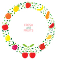 Mixed fruits icons wreath vector