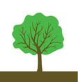 Tree color vector