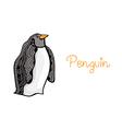 Card of penguin hand drawn original artwork vector