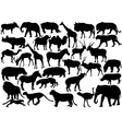 African wildlife silhouettes vector
