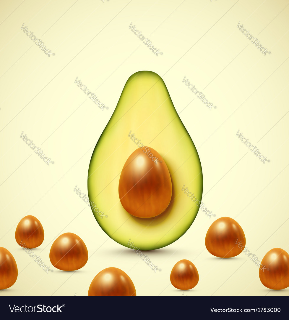 Half an avocado vector | Price: 1 Credit (USD $1)