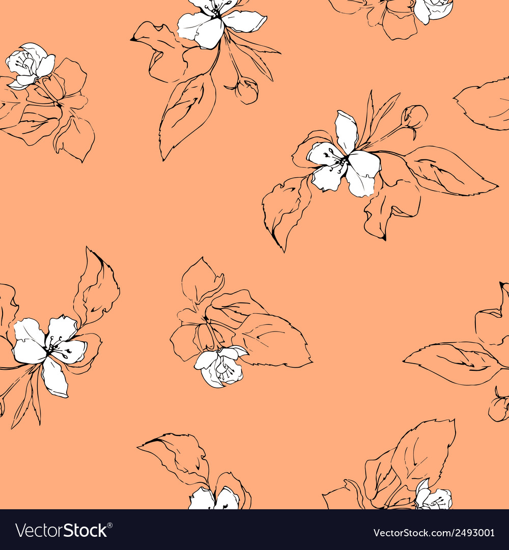 Appleblossoms vector | Price: 1 Credit (USD $1)
