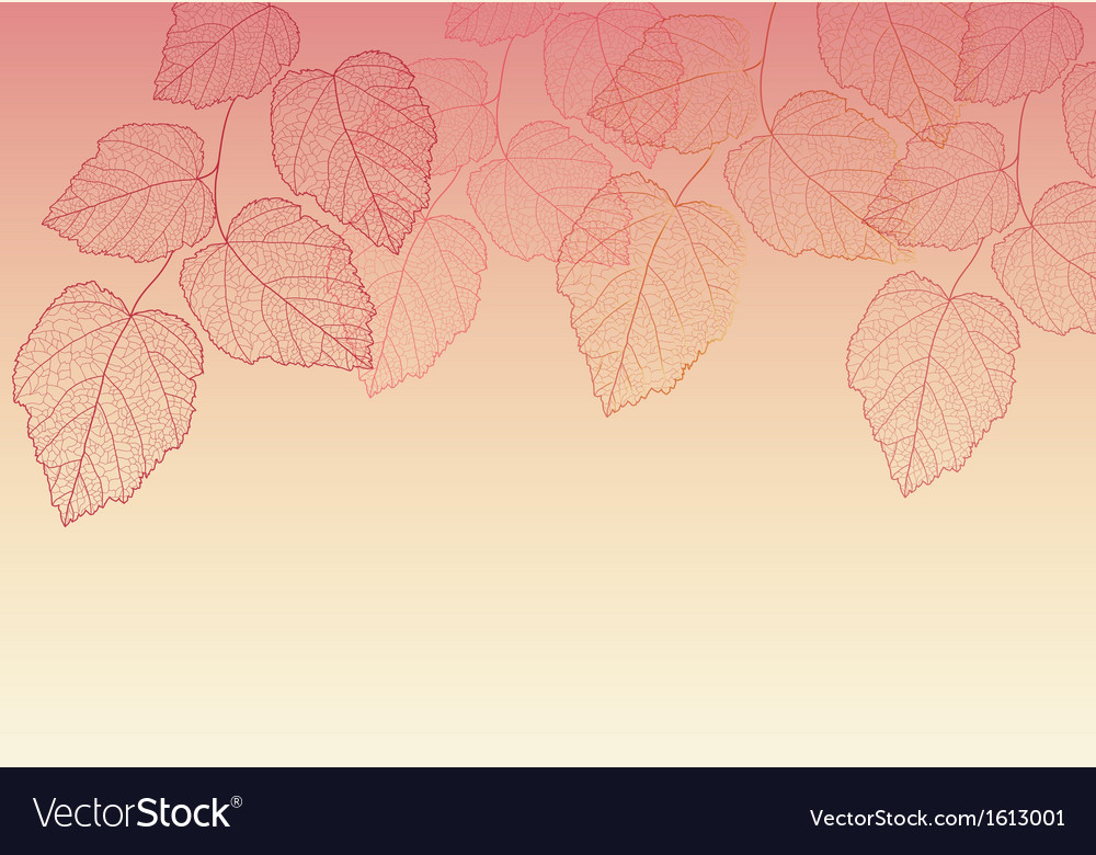 Nature background with leave vector | Price: 1 Credit (USD $1)