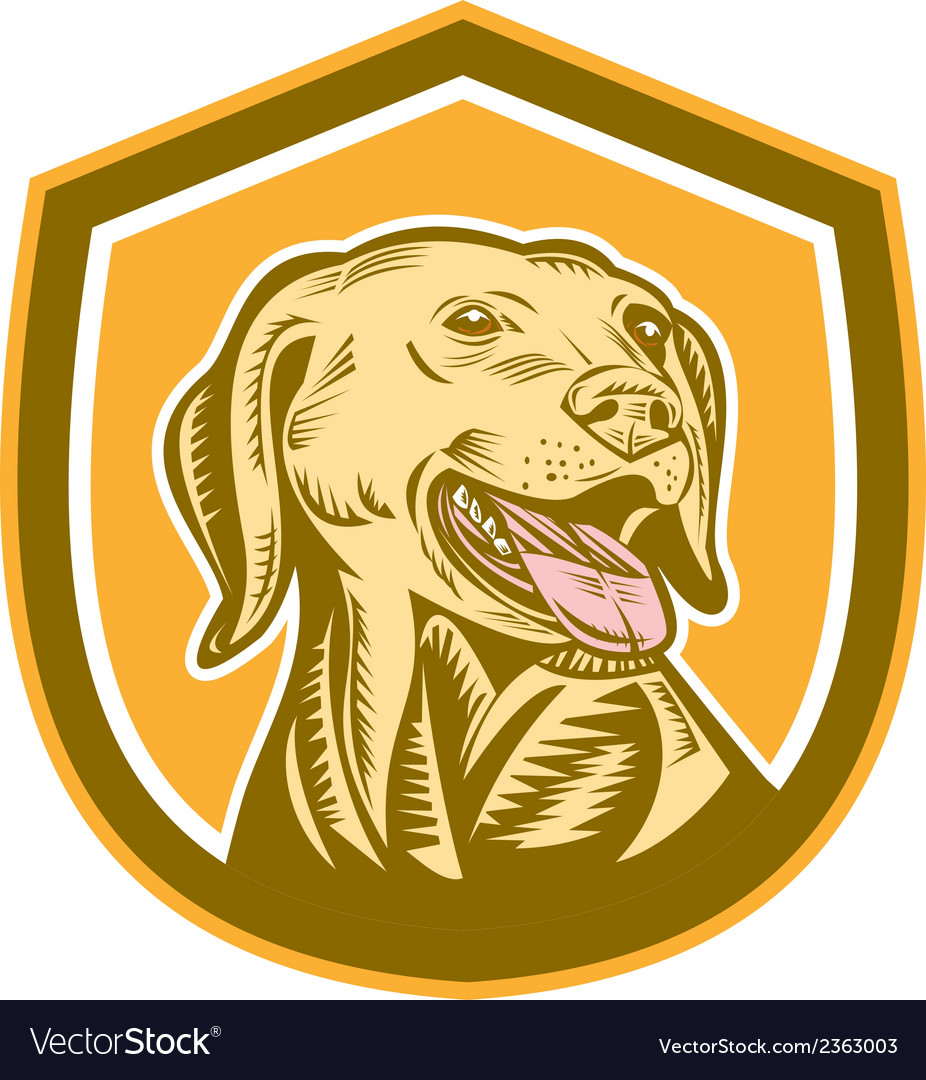 Labrador dog head shield woodcut vector   Price: 1 Credit (USD $1)