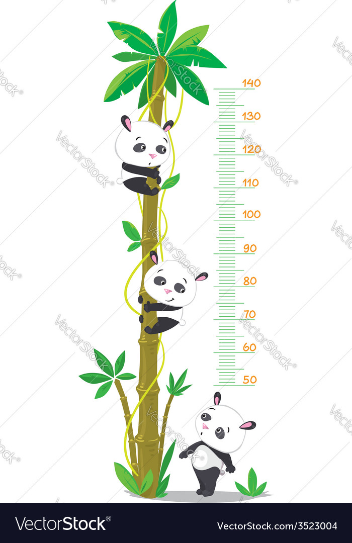 Meter wall with palm tree and three funny pandas vector | Price: 1 Credit (USD $1)