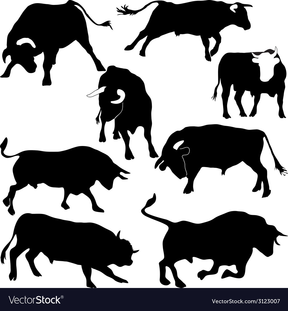 Bulls silhouettes vector | Price: 1 Credit (USD $1)