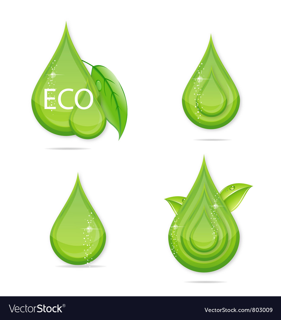Elegance green drops water eco sign vector | Price: 1 Credit (USD $1)