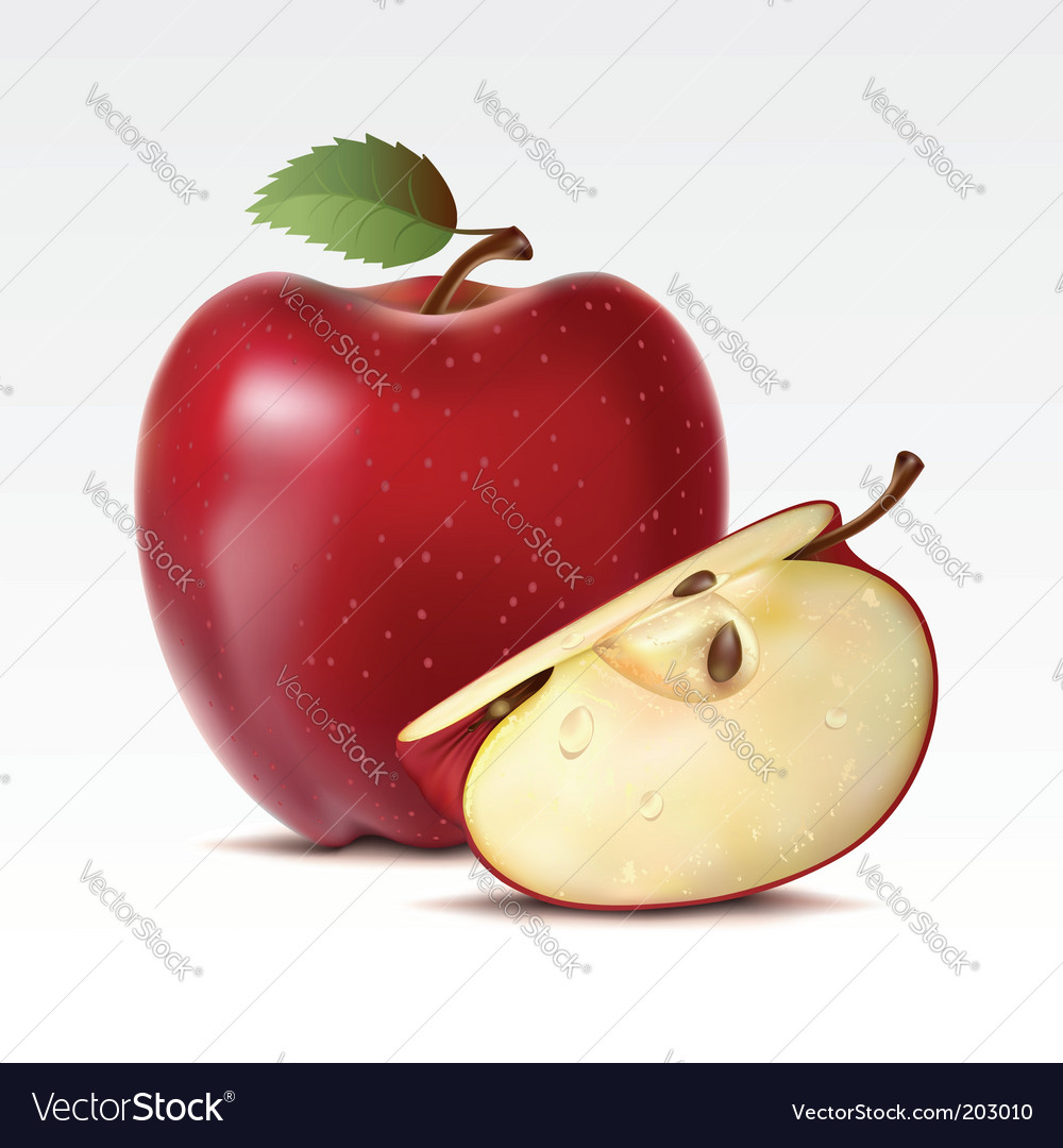 Apples vector | Price: 3 Credit (USD $3)