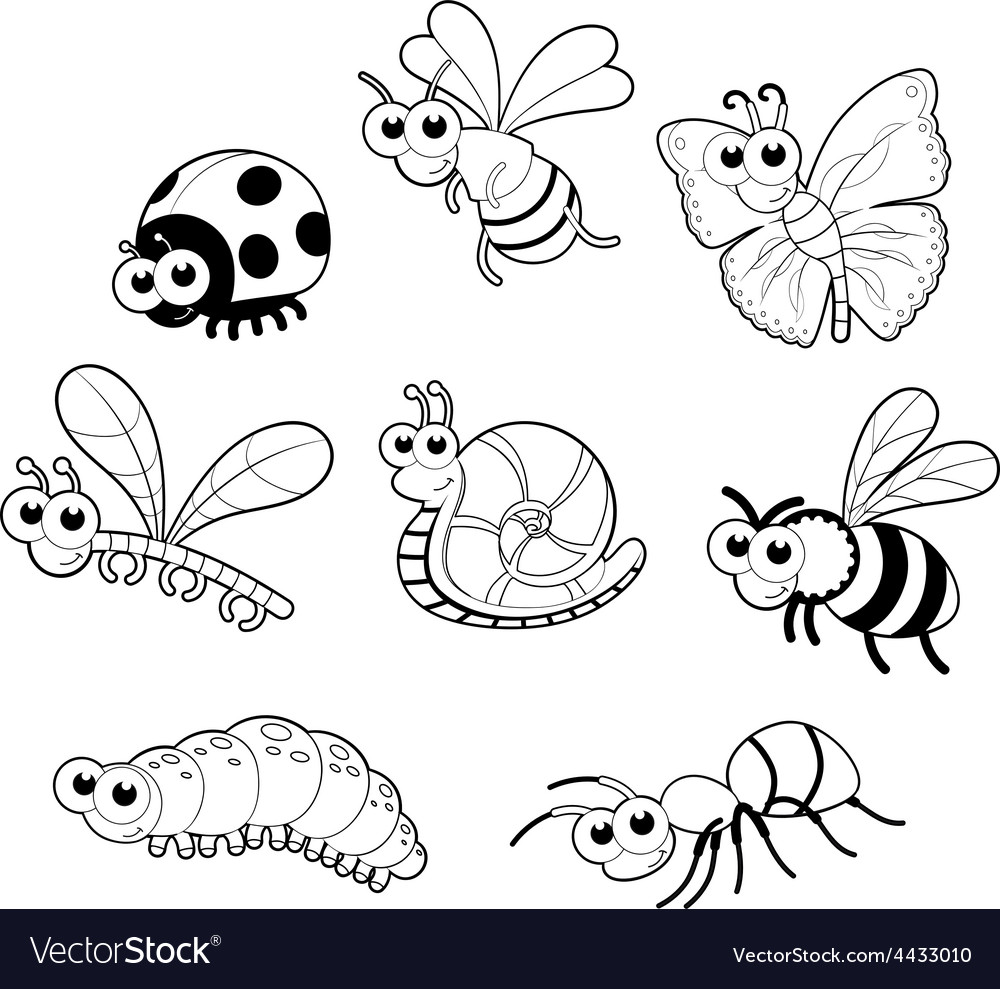 Bugs 1 snail vector | Price: 1 Credit (USD $1)