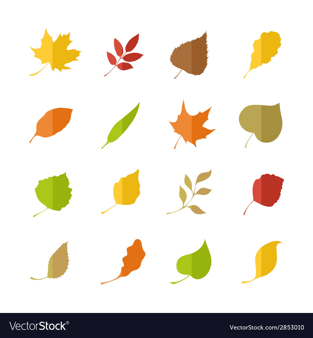 Set of leaves pictograms vector | Price: 1 Credit (USD $1)