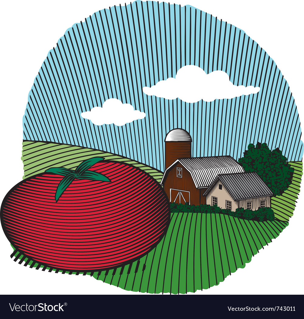 Tomato scene color vector | Price: 1 Credit (USD $1)