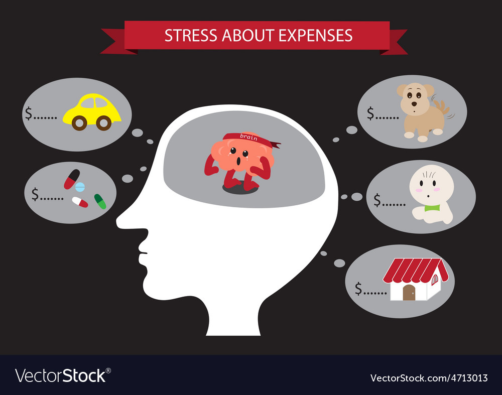 Stress about expense inside head vector